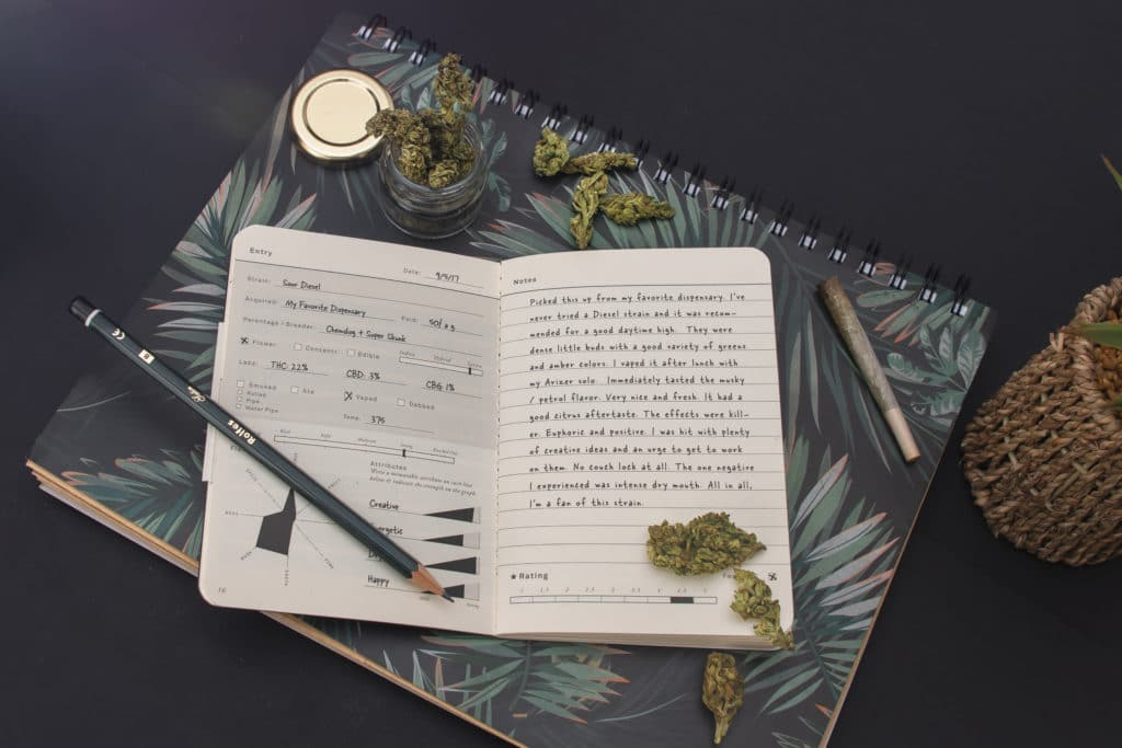 Top view of cannabis heads, notebooks, joint, jar on black background